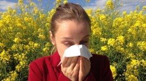 Allergiker - Welcher Staubsauger